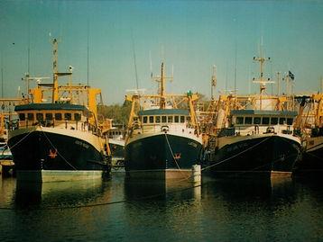 Prawn Trawlers