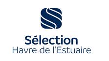 HDE_logoV_selection.png
