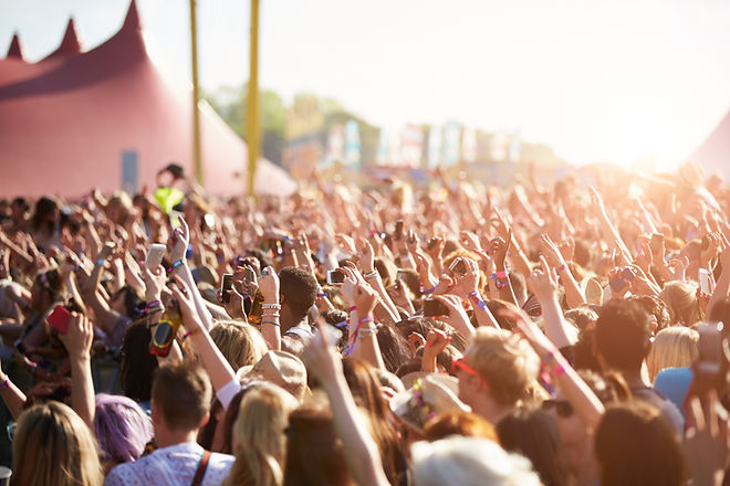 Audience At Outdoor Music Festival.jpg