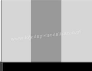Bandeiras Modelo 4.png