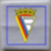 Banda de Punho ACP.jpg