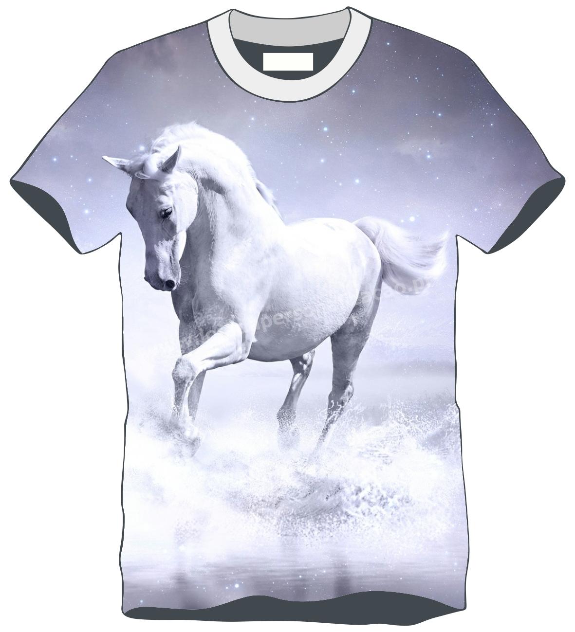 TS Animal Cavalo 4
