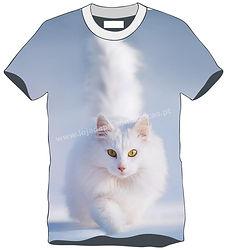 TS Animal Gato 1.jpg