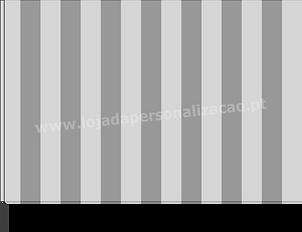 Bandeiras Modelo 7.png