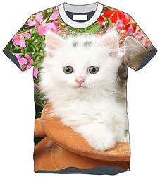 TS Animal Gato 2.jpg