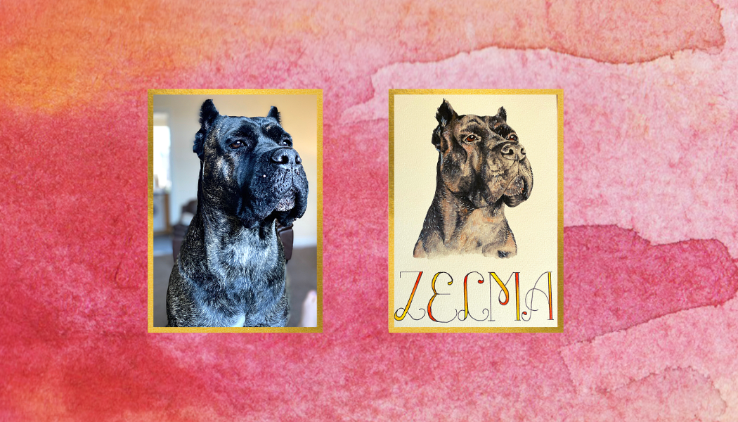 Zelma - Before & After