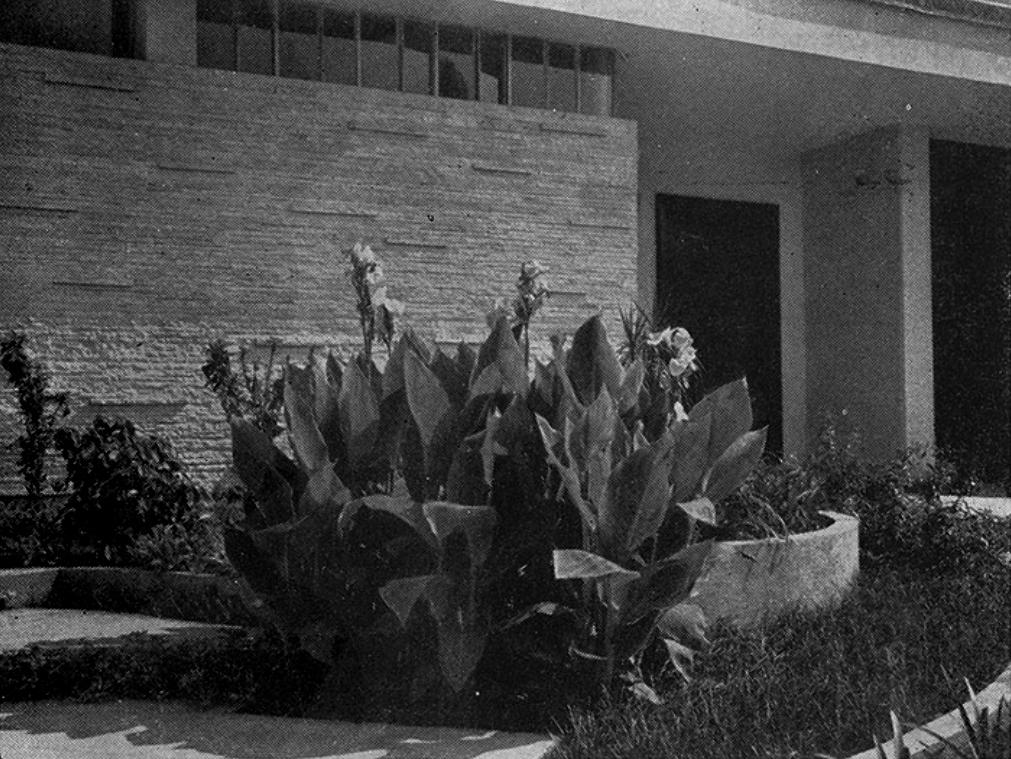 residência filip riwczes