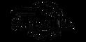 Streamline_discs_logo-removebg-preview_e