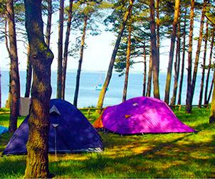 natur-camping-usedom-teaser-platz-3.jpg