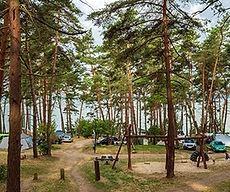 natur-camping-usedom-teaser-platz-1.jpg