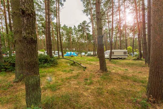 natur-camping-usedom-impressionen-1.jpg