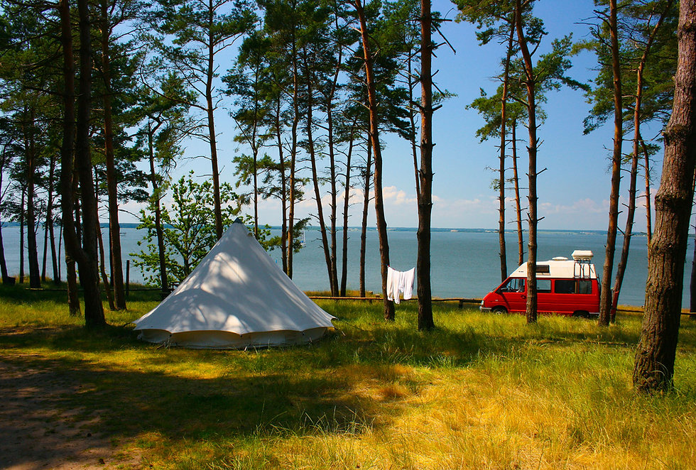natur-camping-usedom-sommer-2.jpg
