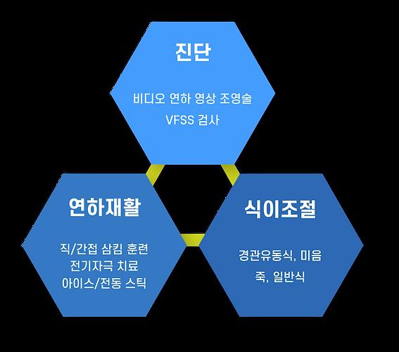VFSS 다이어그램.png