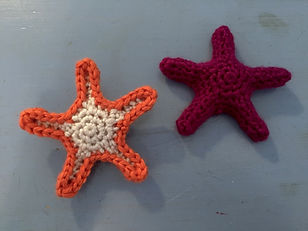 Sea Life Ochre Sea Stars