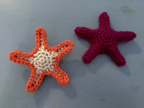 Sea Life Ochre Sea Stars