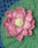 Lotus_Crop.JPG