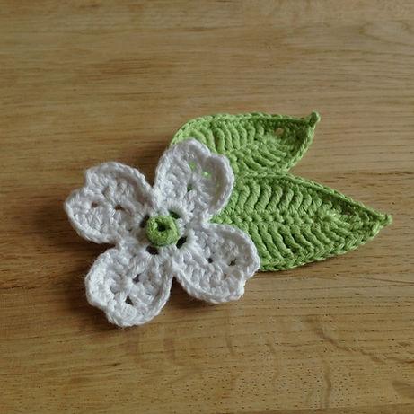 Dogwood Flower and Leaf