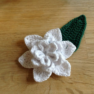 Gardenia Flower and Leaf