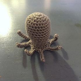 Sea Life Octopus