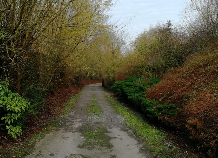 vieux chemin