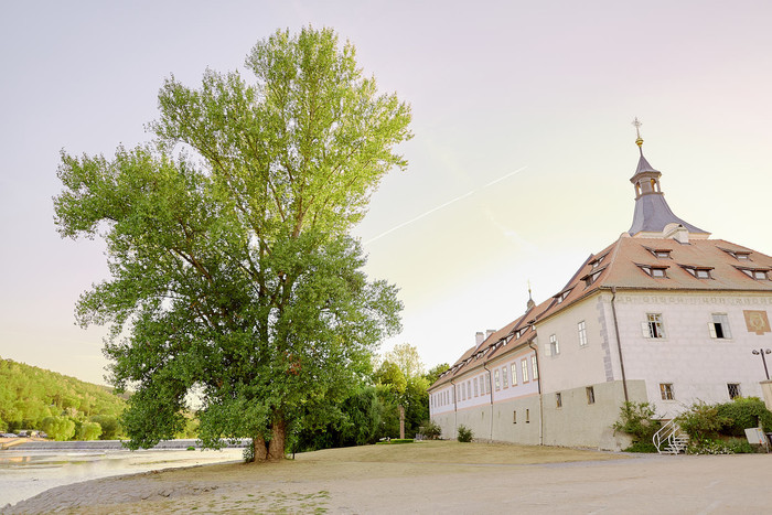 Svatba - Krupickovi 70.jpg