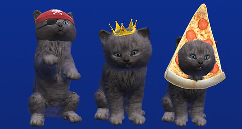 Students-kittens-and-Axel-F-McVities-has