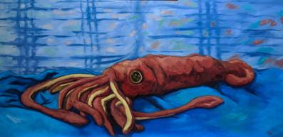 Specimen 103 - Anacortes Squid Doll