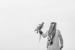 Ooredoo Falcon - By BrigFord -14