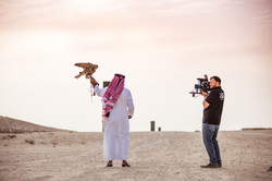 Ooredoo Falcon - By BrigFord -9