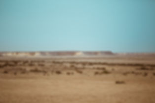 Ooredoo Falcon - By BrigFord -18.jpg