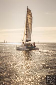 Robben Island Race 2021 By BrigFord_-74.JPG
