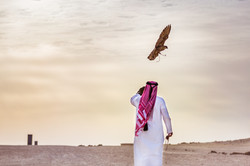 Ooredoo Falcon - By BrigFord -17