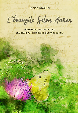 L'Evangile Selon Aaron - A novel