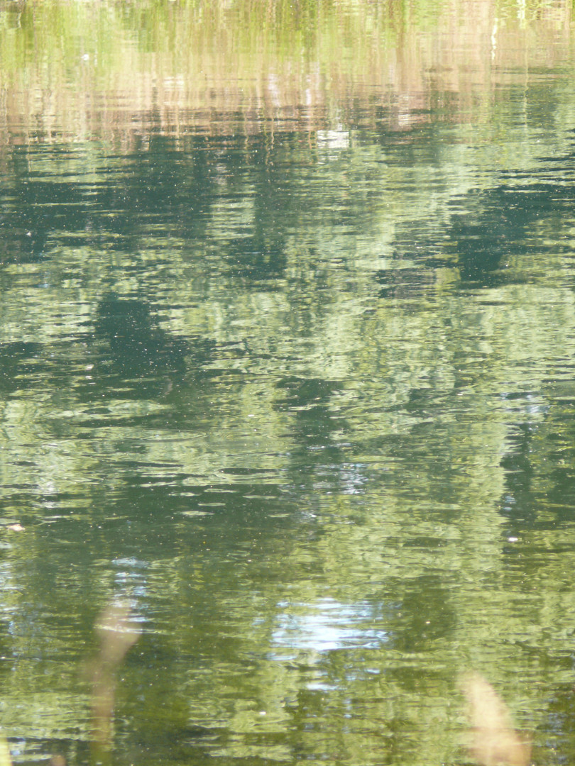 Pond Reflection Pattern