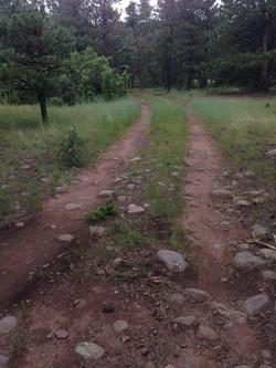 Trails To Adventure