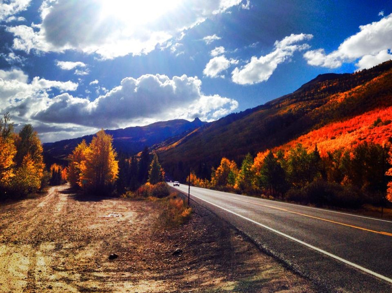 High Country Fall Color