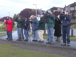 Birders at Play