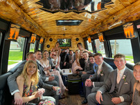 Wedding in Northwoods Dreamliner.jpg