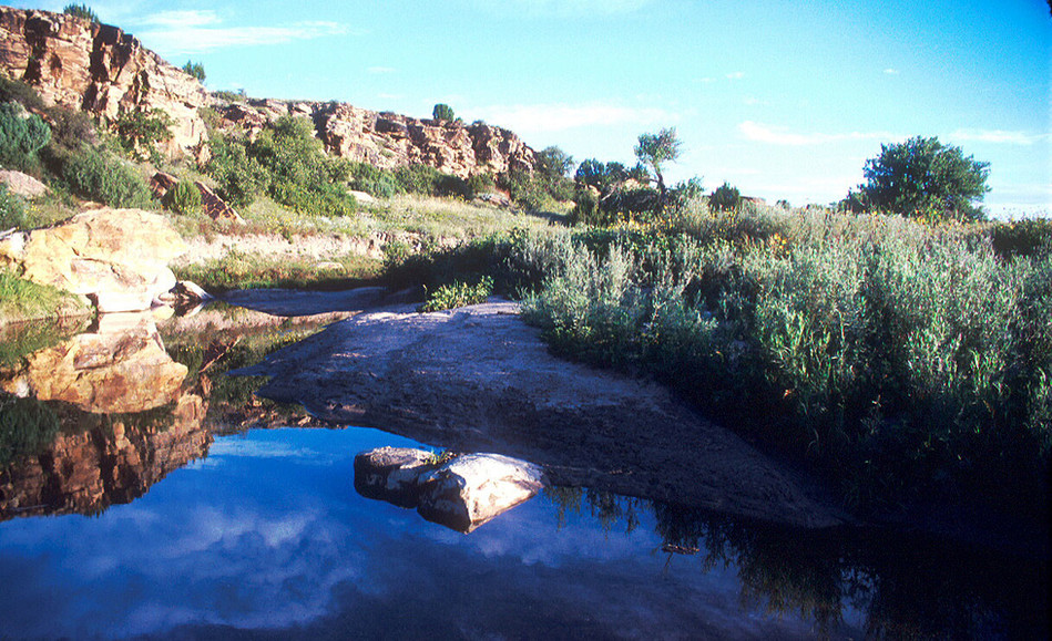 Carrizo Creek