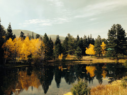 Fall at the Pond