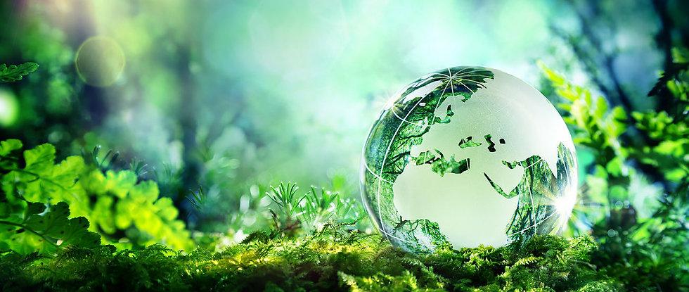 sustainability 1.jpg