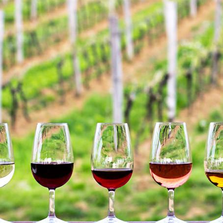Vinhos do Dão elegem cinco platinas de quatro sub-regiões distintas