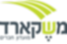 Meshecard logo_z (1).png