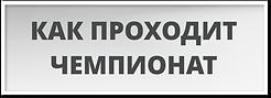 kak_prokhodit_chempionat.png
