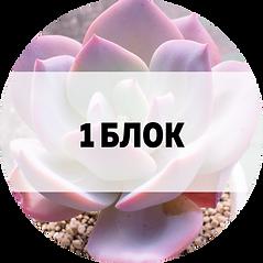 1_blok.png