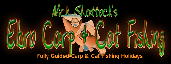 ebro carp & cat fishing logo.png