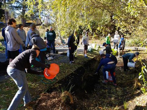 Restoring Our Trails: Friends of Fanno Creek Headwaters