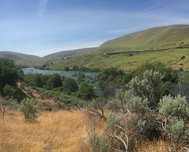 Lower Deschutes River OWF