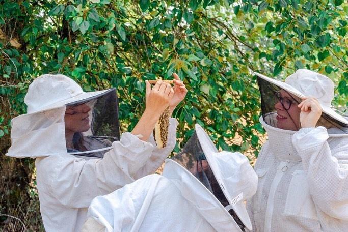 Bee & Bloom apiaries