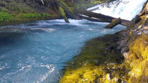 Embracing the McKenzie River Valley